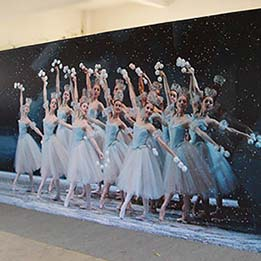 Lobby Photo Opp Backdrop For Ballet