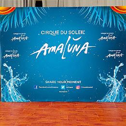 VIP Photo Opp Backdrop For Cirque Du Soleil